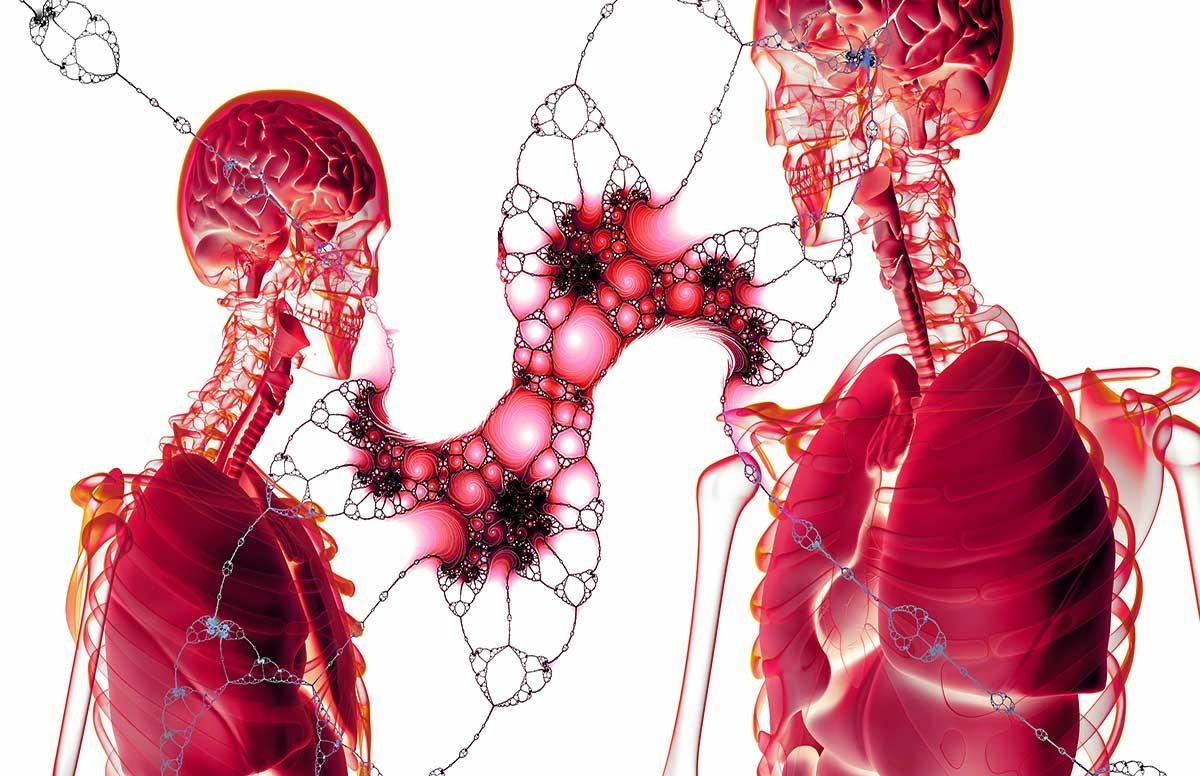 Lee más sobre el artículo Cognición, células indiferenciadas y desarrollo